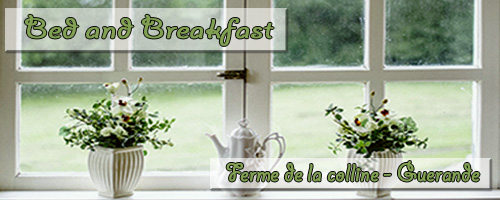 bannière bed and breakfast